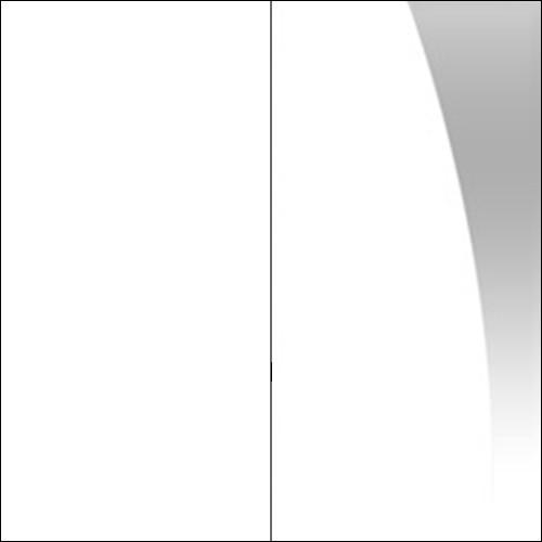 Biały / biały połysk